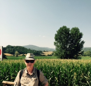 This is why I had to come back to Tuscany but you need to hear the picture..cicadas, bursting heat, fields into the distance, a weather beaten farmer making hay with primitive instruments, productive crops, green and gold and a certain shimmering light which is like no other in the heat.