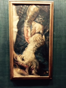 Rubens painting of a lapdog in the art gallery of the Ducal Palace. Dog is actually Dylan!