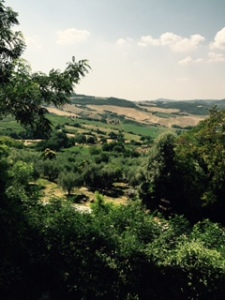 Everlasting view from the site of the Church of San Biago in Montepulciano. It is a place of deep peace, beauty and faith.