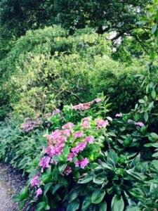 Stourhead House herbaceous borders