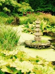 Water garden again at Wilton