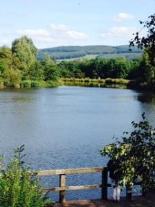 Carlisle a quiet spot