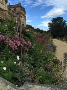 Herbaceous borders on the south face of Harewood