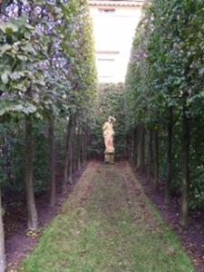 garden view at Harewood