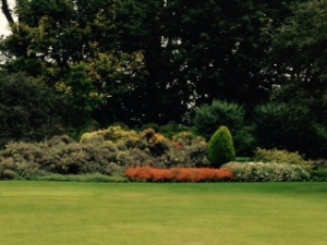 Holyrood garden 1