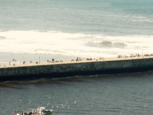 Whitby surf 2