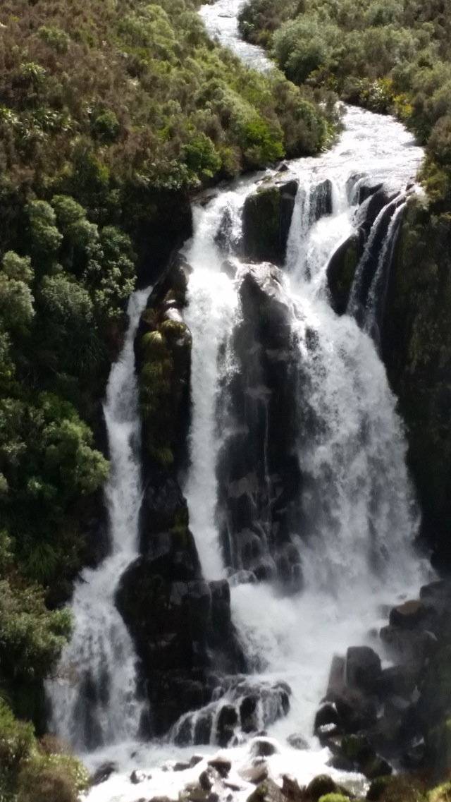 NZ North Island waterfall