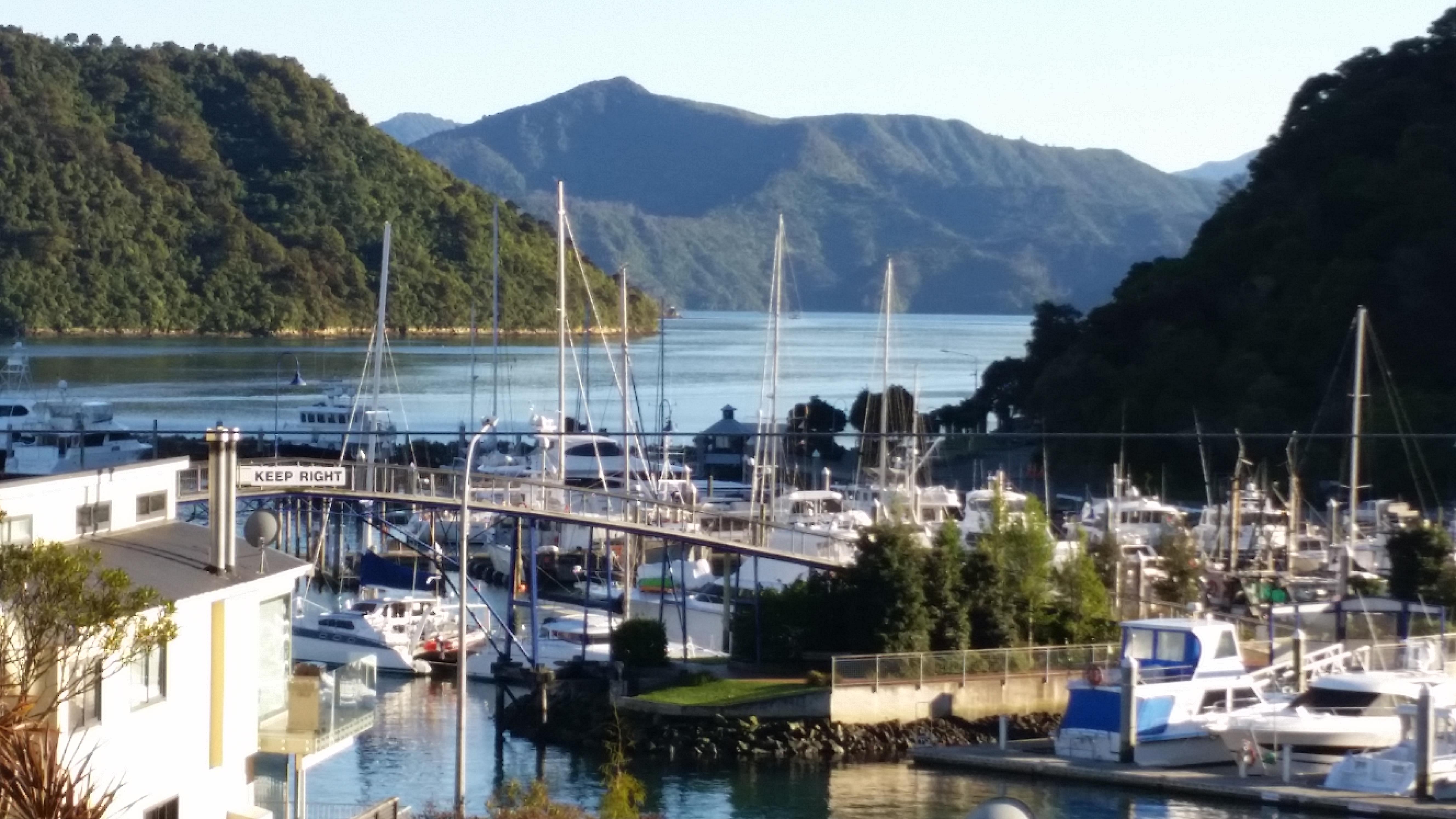NZ Picton harbour)